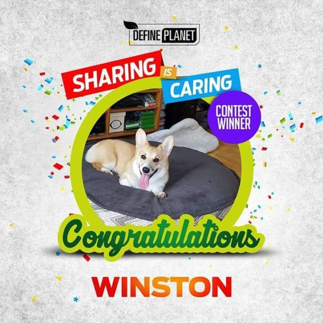 DefinePlanet is happy to announce the sharing is caring winnerhellip