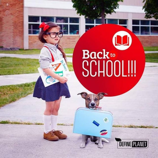 Kids are back to school today Best wishes from Definehellip