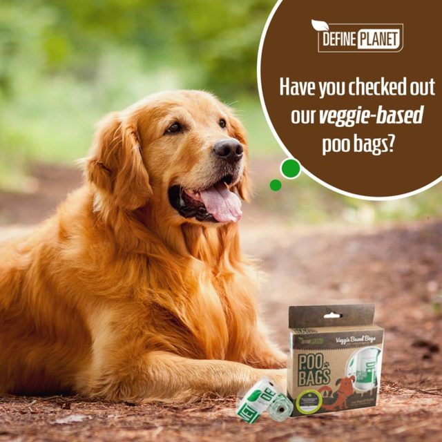 Our Veggiebased poo bags are certified compostable and can behellip