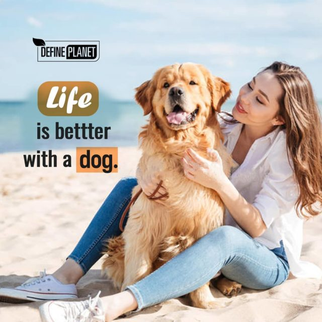 Do you like? Dogs are not our whole life buthellip