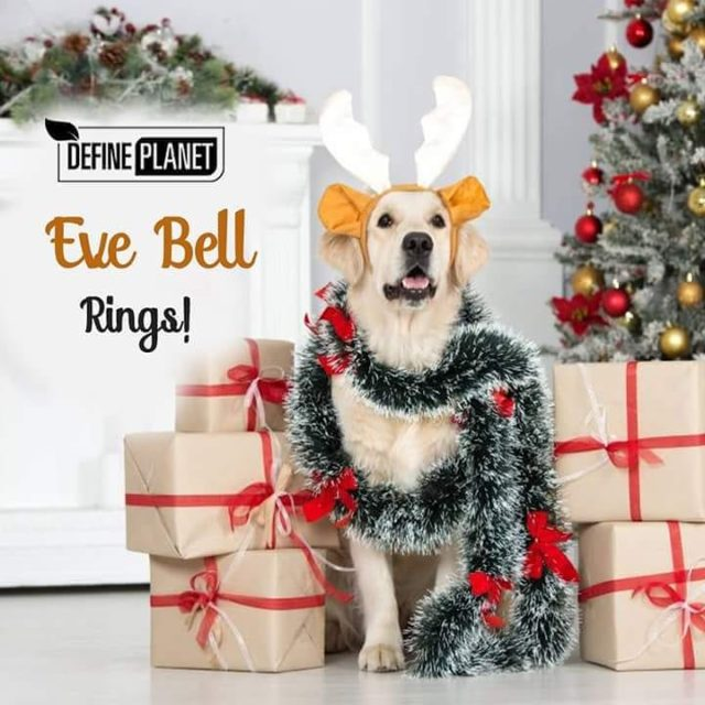 DefinePlanet Wishes you all a Merry Christmas Jingle bell Jinglehellip